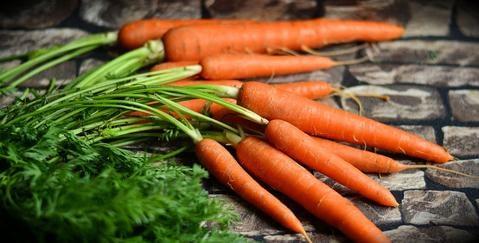 Carrots Regulate Blood Sugar Levels