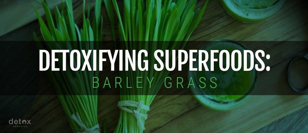 Detoxifying Superfoods: Barley Grass