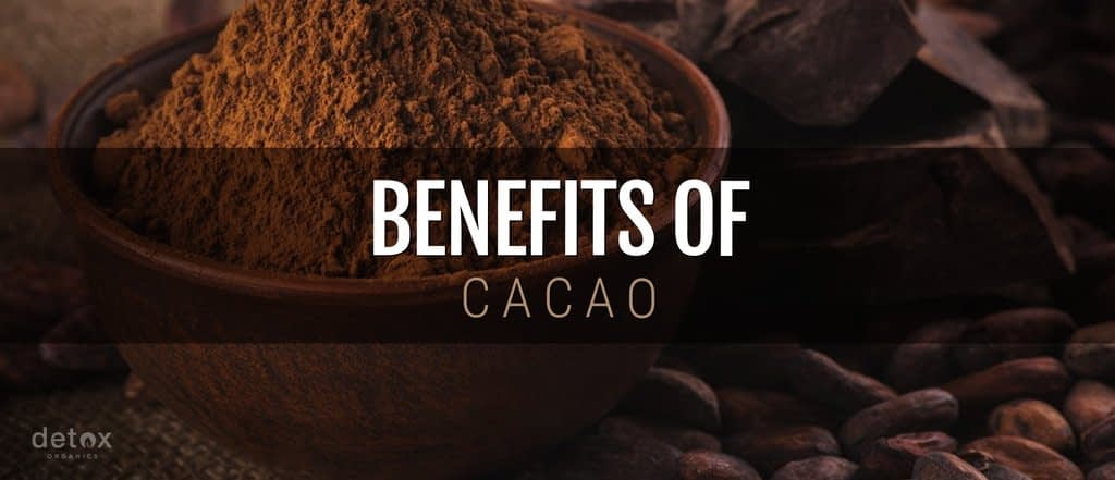 Real Benefits of Raw Cacao: Cocoa versus Cacao